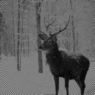 Wild_Healer